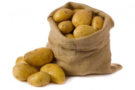 Photo for Raw potatoes in burlap bag isolated on white background - Royalty Free Image