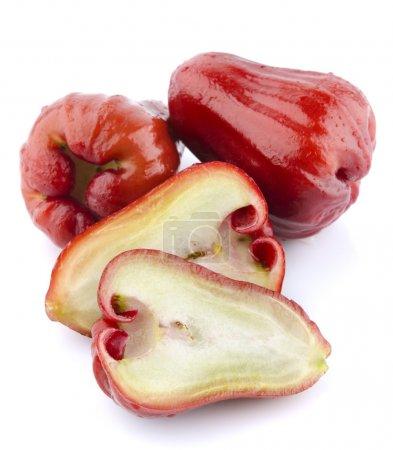 Photo pour Pommes roses ou chomphu sur fond blanc - image libre de droit