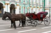 Kočár s koňmi v pozadí Ermitáž