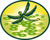 Dragonfly flying with lily pads and sunburst