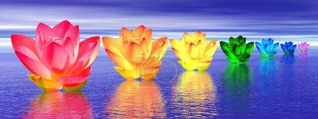 Photo pour Chakra couleurs de fleur de lys sur l'eau dans fond bleu nuit - image libre de droit