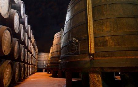 Aging Port wine in cellar
