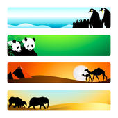 Travel animal destinations banner or header 4-color backgrounds set
