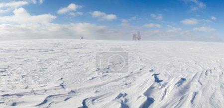 Winter panorama.