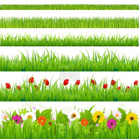 Illustration for Big Grass And Flower Set, Isolated On White Background, Vector Illustration - Royalty Free Image