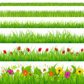 Big Grass And Flower Set Isolated On White Background Vector Illustration