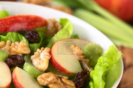 Fresh home-made delicious Waldorf Salad consisting...