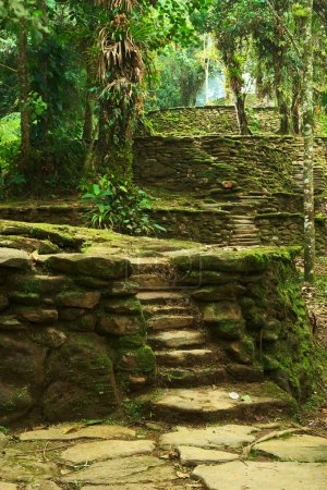 Stone Stairs and Terraces in Ciudad Perdida, Colombia