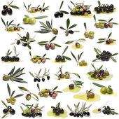 Great set of olives over white background.