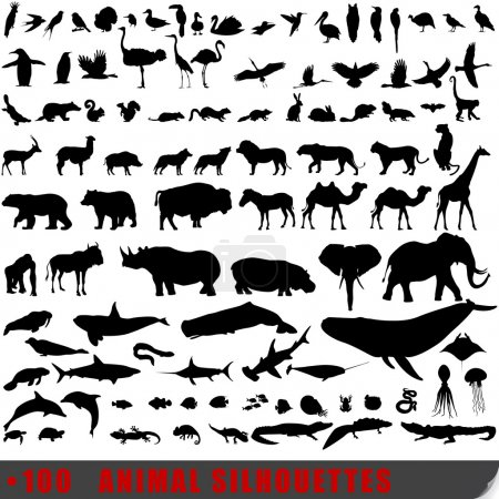 Illustration for Vector set of 100 very detailed animal silhouettes - Royalty Free Image