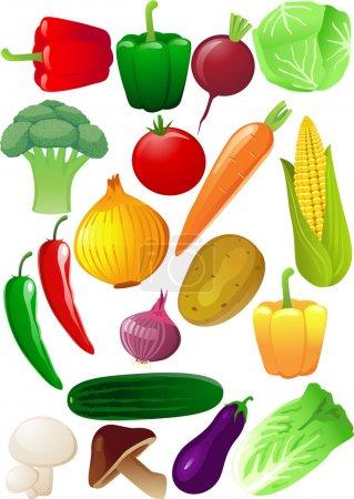 Illustration pour Légumes vecteurs - image libre de droit