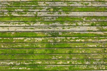 Photo pour Photo de fond en vieux panneaux de bois vert - image libre de droit