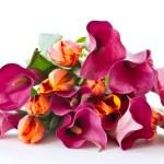 Постер, плакат: Bouquet of calla lilies and tulips