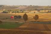Italian rural view fields, sunset and the trees