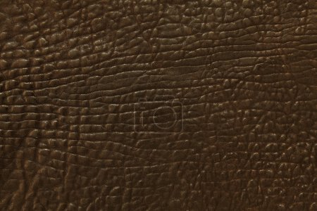 Photo for Closeup photo of dark brown leather as a background. - Royalty Free Image