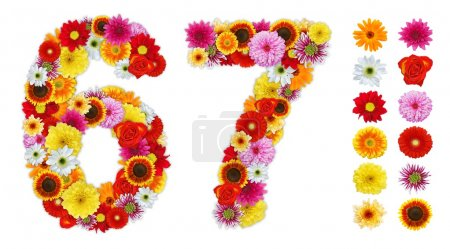 Numbers 6 and 7 made of various flowers