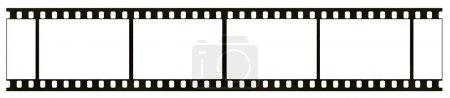 Blank black-and-white negative film frame