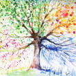 Hand painted illustration of four seasons tree.Pic...