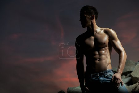 Photo for Muscular body of an handsome bodybuilder - Royalty Free Image