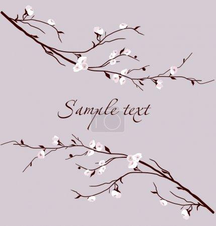 Illustration for Sakura (cherry blossom) floral background - Royalty Free Image