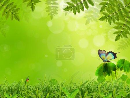 Photo pour Paysages naturels - image libre de droit