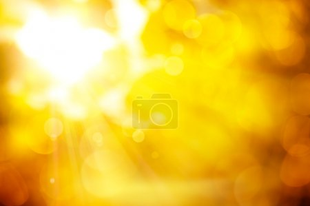 Photo for The sun's rays pass through the orange leaves of autumn trees - Royalty Free Image
