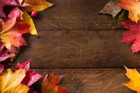 Photo for Yellow wet autumn leaves on the background a dark old wood - Royalty Free Image