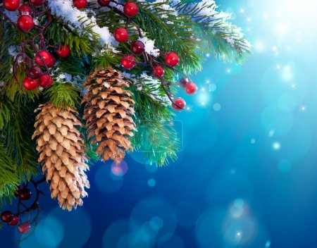 Photo for Branch of the snowy Christmas tree on night blue background - Royalty Free Image