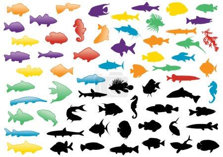 Fish silhouettes illustration set.