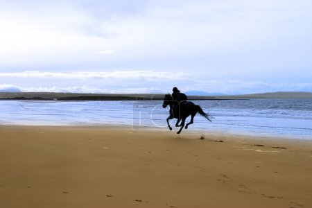 Horse and rider galloping along the coast