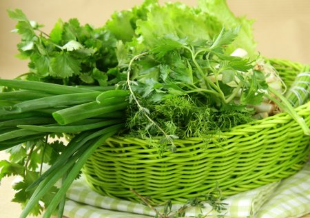 Photo for Fresh green grass parsley dill onion herbs mix in a wicker basket - Royalty Free Image