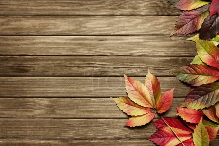 Photo for Autumn leaves over wooden background with copy space - Royalty Free Image