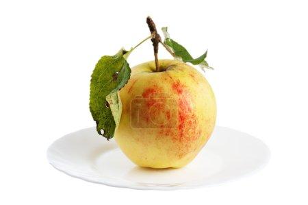 Beautiful ripe apples, background