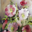 Watercolor painting of the beautiful flowers....