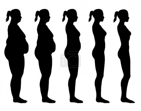 Photo for A side view illustration of 5 female silhouette's in different stages ranging from obese to skinny. - Royalty Free Image