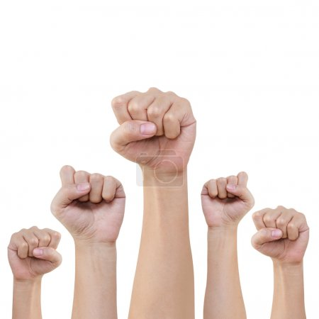 Photo for Group of hand and fist lift up high on white background - Royalty Free Image