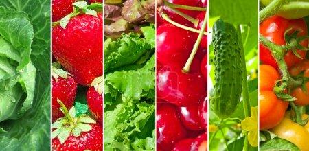 Photo pour Fruits et légumes, le collage de six photos - image libre de droit