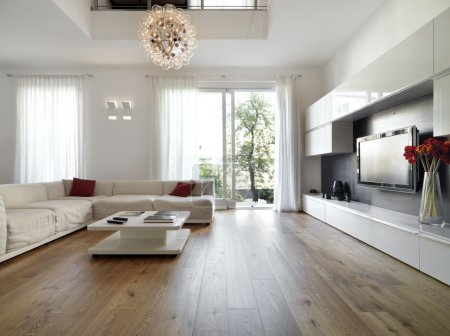 Modern living room with wood floor overlooking the...