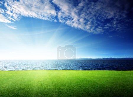 Photo pour Herbe verte et mer des Caraïbes - image libre de droit