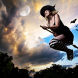 Wicked witch flying on broomstick with bats behind...