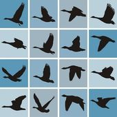 Vector illustration wild geese pattern-textile printing and wallpapers