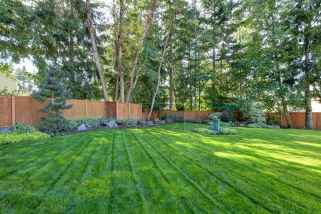 Large fenced back yard with green grass