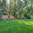 Large back yard with lots of trees and grass...