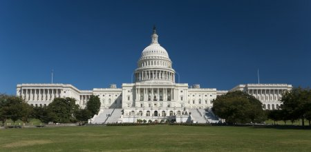 The US Capitol in Washington D.C....