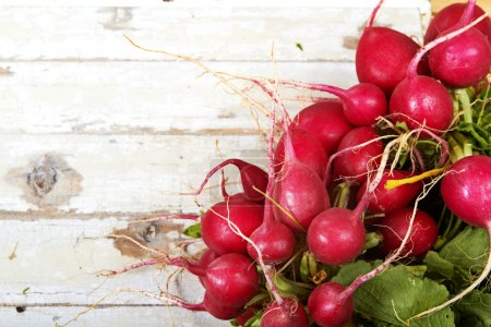 Photo for Close-up of a big bunch of fresh radish on grunge wooden background - Royalty Free Image