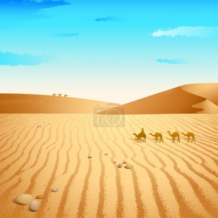 chameau dans le désert