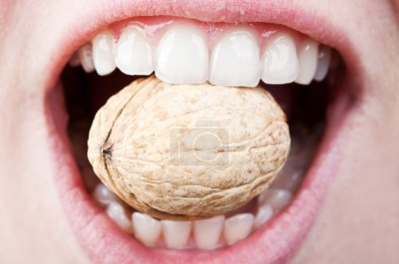 Photo for A woman with a healthy and beautiful teeth eating hard nut - Royalty Free Image