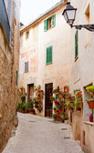 Majorca Valldemossa typical with flower pots in facade