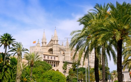 Almudaina and Cathedral of Palma de Mallorca in Majorca