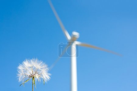 Dandelion and windmill background green energy